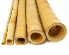 bamboo-stems-deco-building-material-nature-color